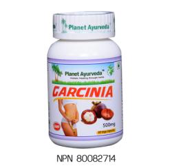 Health Care / Garcinia Capsules