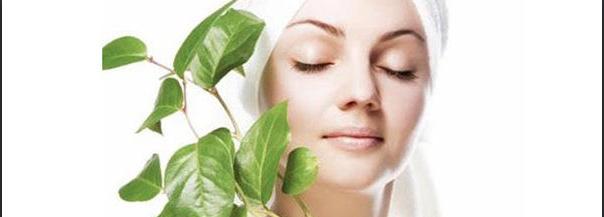 The Ayurvedic Way To Skin Care - Ayurveda Therapies :: Chopra Ayurveda Surrey